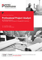 Professional Project Analyst