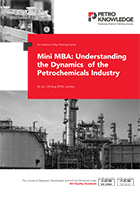 Mini MBA:  Understanding the Dynamics of the  Petrochemicals Industry