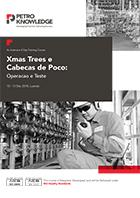 Xmas Trees e Cabecas de Poco: Operacao e Teste