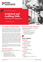 Analytical and Auditing Skills