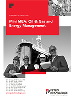 Mini MBA: Oil & Gas and Energy Management
