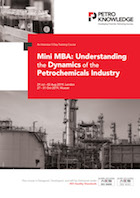 The 5-Day Mini MBA on  Understanding the Dynamics of the Petrochemicals Industry