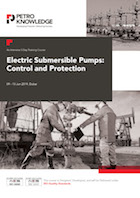 Electric Submersible Pumps: Control and protection